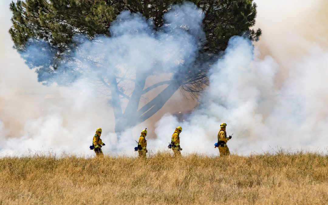Wild-Land Interface Fires – Planning, Community Relationships and Response Capability