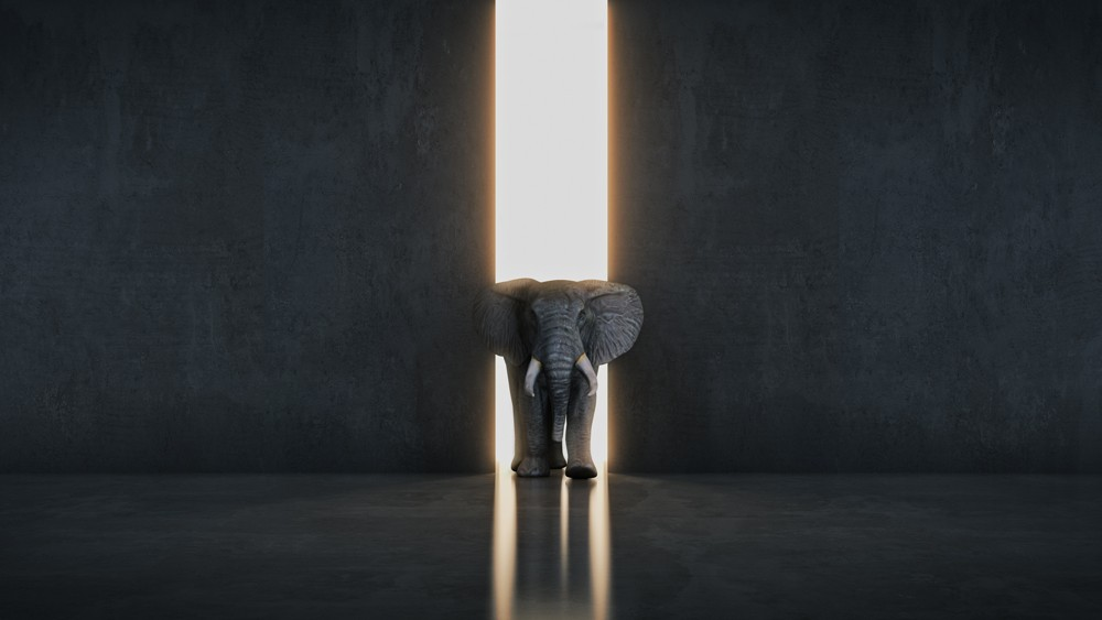 Is Your Organization Planning for Black Elephant Events?